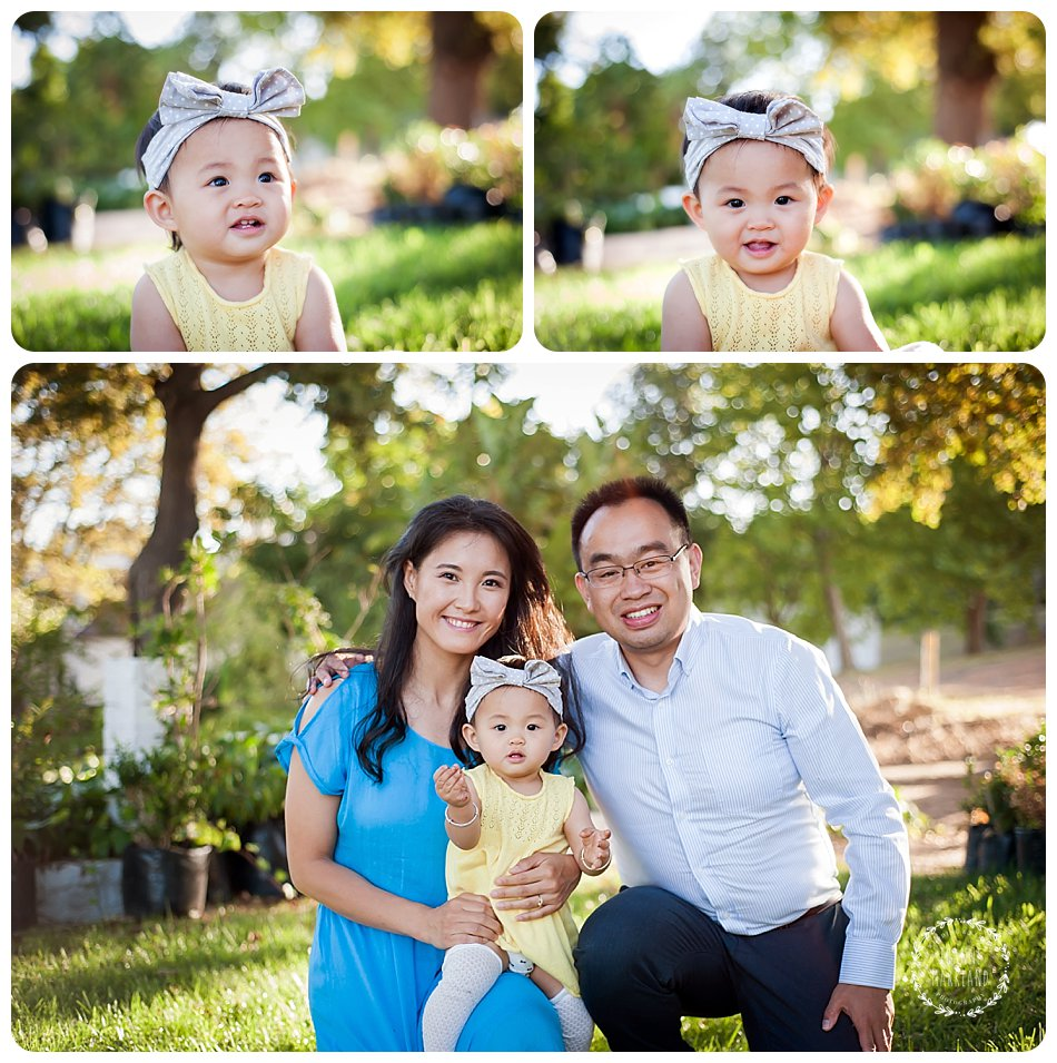 neethlingshoff family portraits taken by joanne markland photography