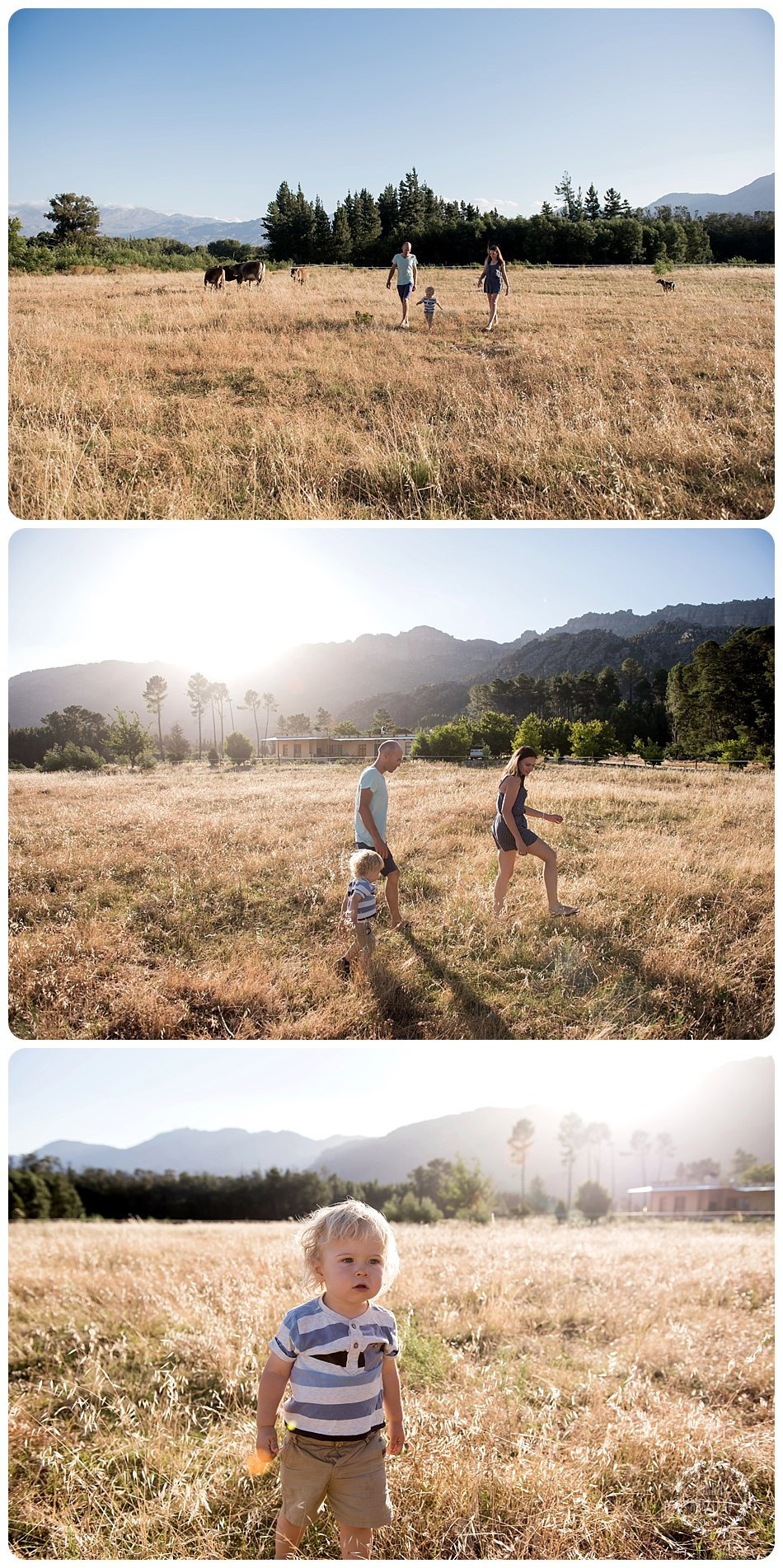family portraits at petervale campsite in ceres by joanne markland photography cape town photographer