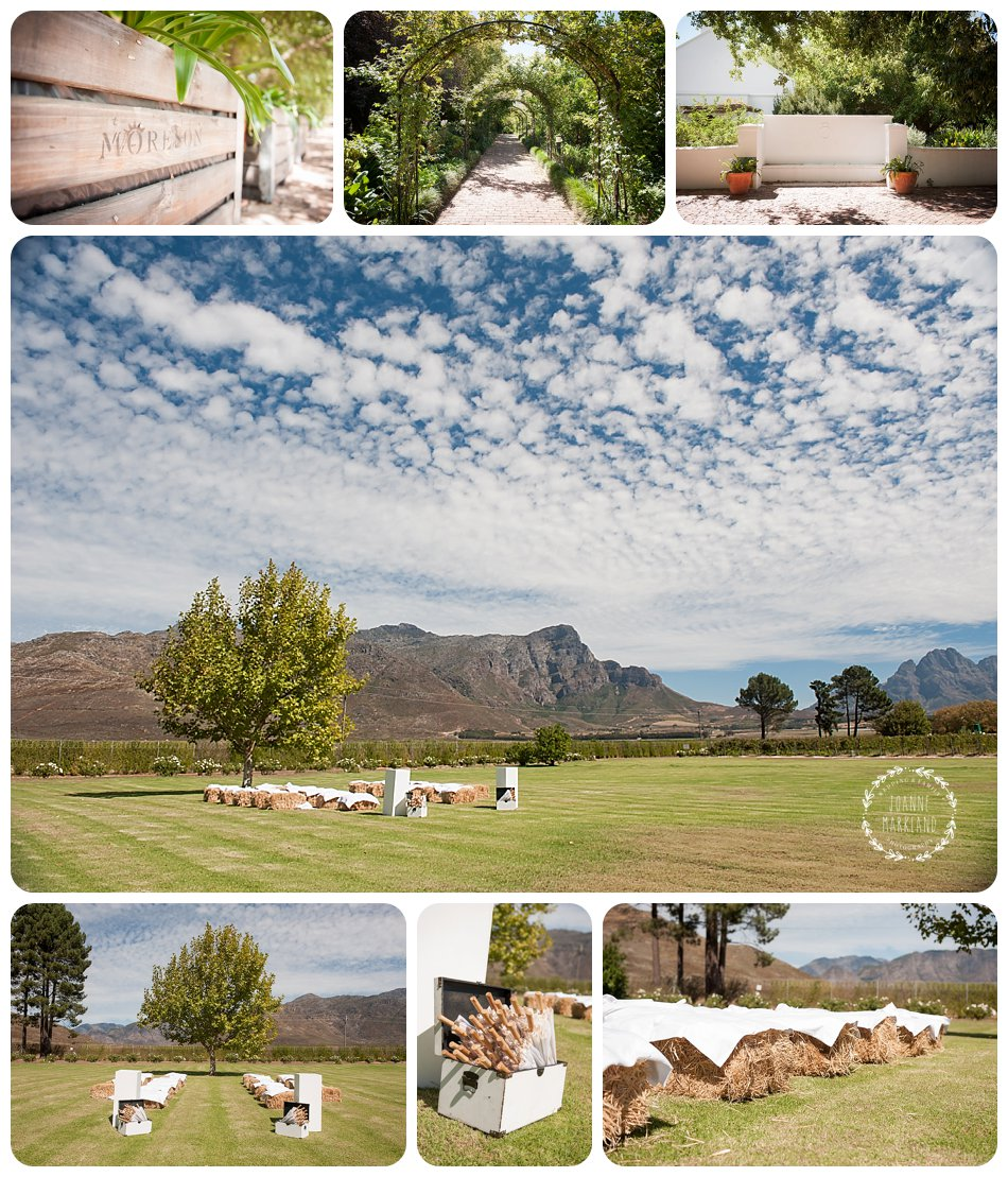 moreson wedding, moreson franschhoek wedding, wedding photography, franschhoek wedding photography, joanne markland photography, cape town weddings, cape town wedding photographer, bride and groom