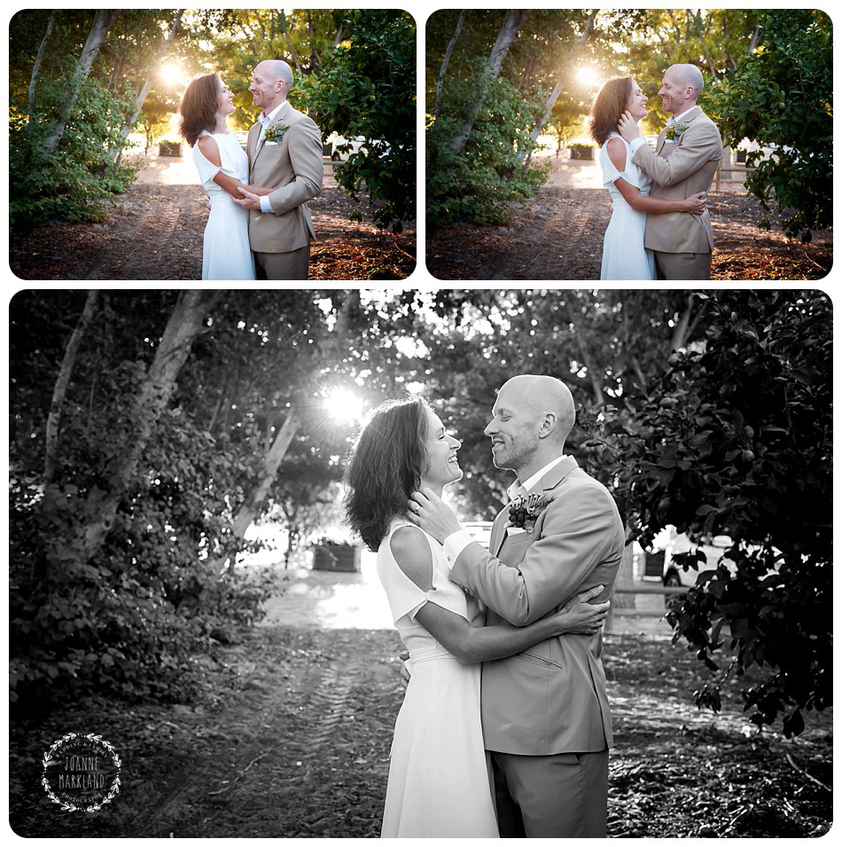 moreson_wedding_franschhoek_joanne_markland_photography_jade_events-037