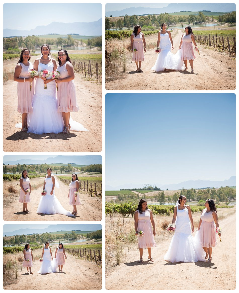 wedding-photographer-cae-town-joanne-markland-nelsons-estate-paarl-0024