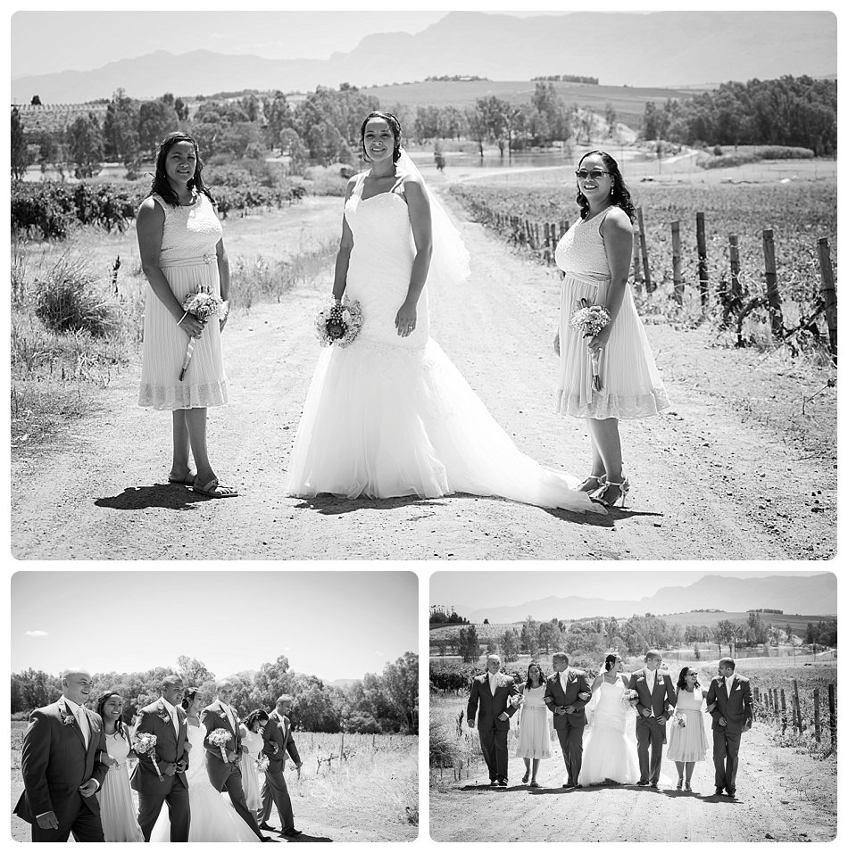 wedding-photographer-cae-town-joanne-markland-nelsons-estate-paarl-0025