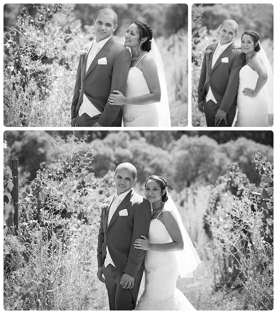 wedding-photographer-cae-town-joanne-markland-nelsons-estate-paarl-0028